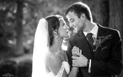 HollyHedge Estate Celestial Wedding