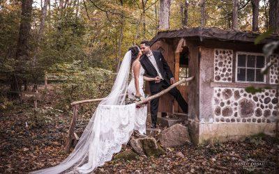 Bucks County Idyllic Fall Wedding